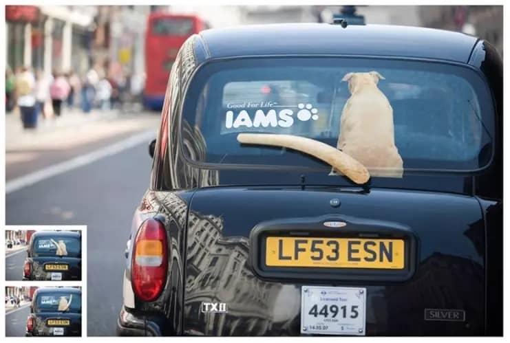 báo giá quảng cáo dán xe ô tô
